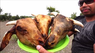 INDIAN FRIED GOAT HEAD - WILD FOREST SPICY CURRY COPY