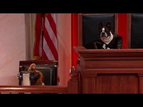 Alabama Legislative Black Caucus v. Alabama: Oral Argument - November 12, 2014