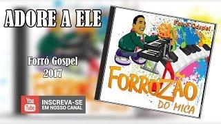 FORROZÃO DO MICA - ADORE A ELE 2017 thumbnail