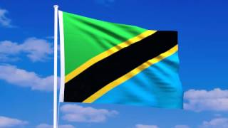 タンザニア連合共和国の国旗