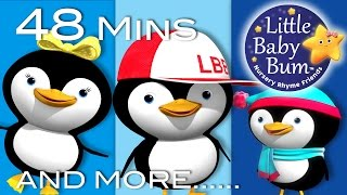 Learn with Little Baby Bum | Five Little Penguins | Nursery Rhymes for Babies | Songs for Kids