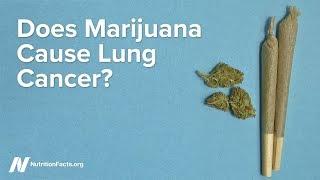 Způsobuje marihuana rakovinu plic?