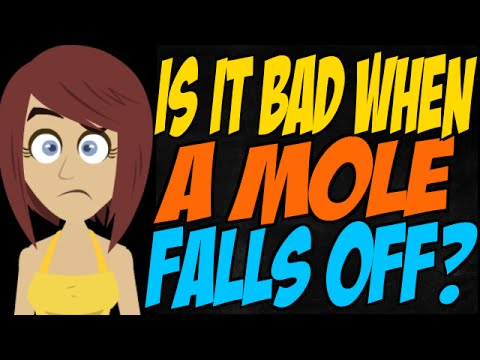 Is it Bad When a Mole Falls Off? - YouTube