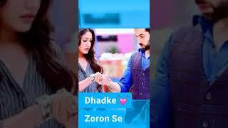 Jitni dafa _ lyrics | PARMANU | AR CREATION STATUS _ AN 7
