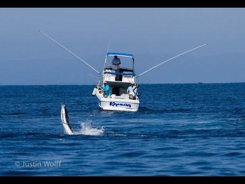 East Cape Billfish Tournament 2013