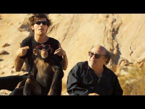 One Direction, Danny Devito & A Chimp
