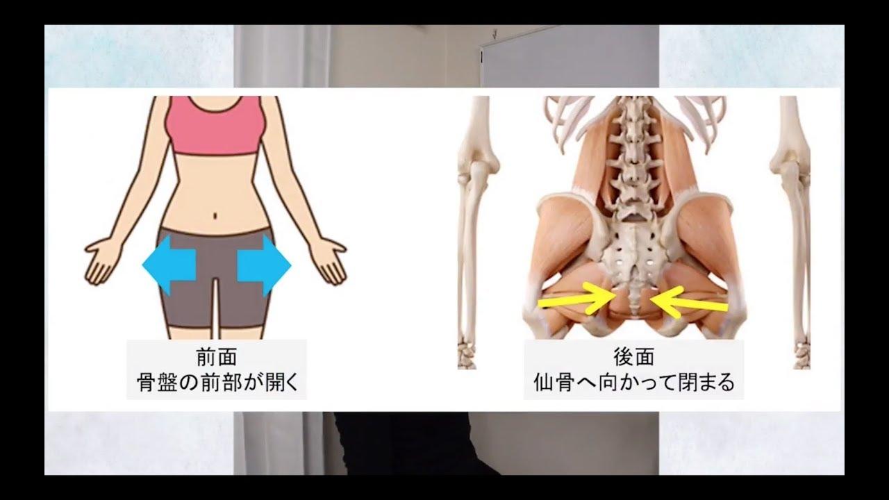 肋骨 が 開い て いる