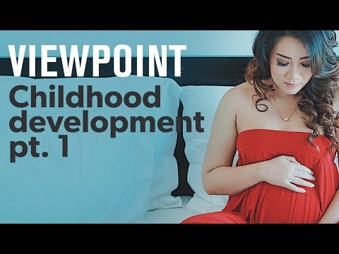 Does a mother's mental health affect her fetus? (Part 1) – interview with Catherine Monk |VIEWPOINT