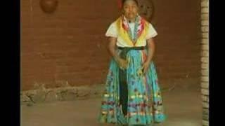 Guelaguetza Jarabe Mixteco 2007