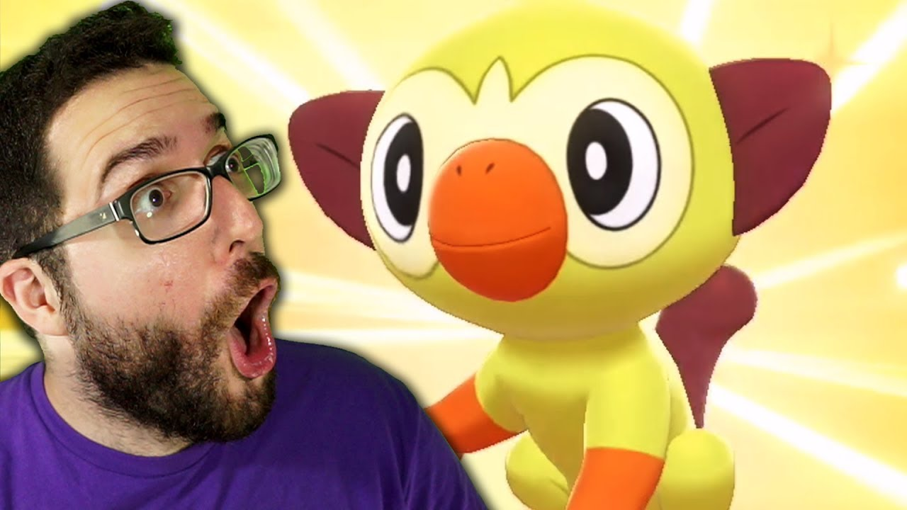 We Got Shiny Grookey Youtube It was sort of a lazy blog because i just finished moving into my new house today and i'm exhausted, but i hope you enjoyed it. we got shiny grookey