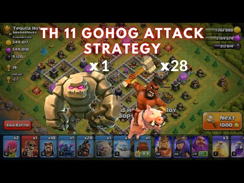 HOW TO ATTACK WITH HOGS IN TH11 ?