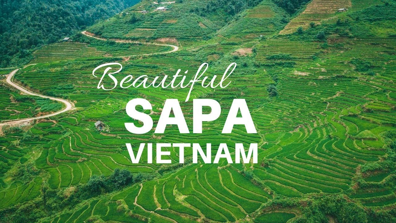 Image result for sapa