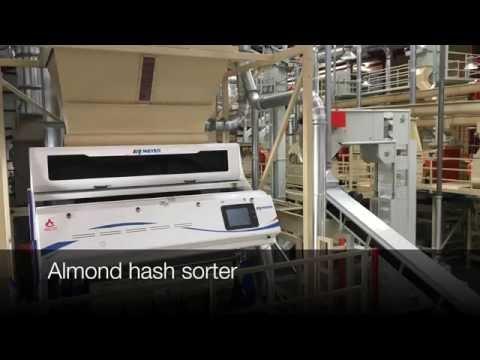 Almond Hash on Meyer optical sorter