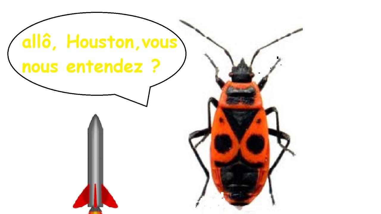 Les gendarmes volants fus e eau youtube - Gendarme dessin ...