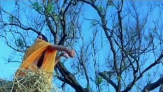 The Tamil Song Konchum Mainakkale on HD 720P