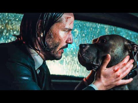 You're A Good Dog Scene - JOHN WICK 3 (2019) Movie Clip