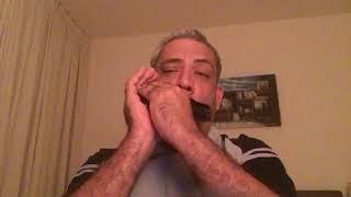 Video Satyam Shivam Sunderam in Harmonica download MP3, 3GP, MP4, WEBM, AVI, FLV Agustus 2018