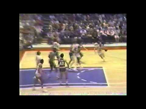 Larry Bird (22/21/4) vs Julius Erving (28/11/7), 1980 ECF game3, highlights