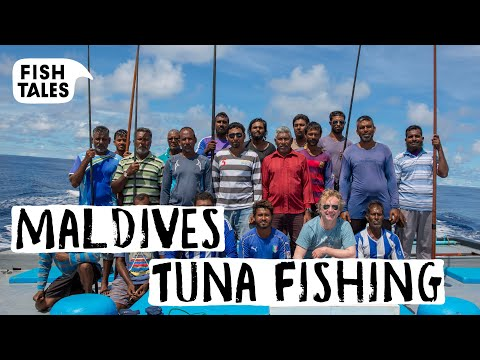 The Only REAL Sustainable TUNA Fishing | Bart Van Olphen