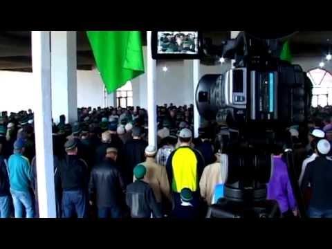Отпетые напарники (2016) — КиноПоиск