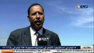غليزان .. الزيادة في انتاج البزلاء ووفرتها في بلدية عين الرحمة