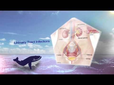 Mans 2016-0003 HD - Thai Meiji Pharmaceutical - The Journey to Success