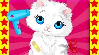 Купаем милых кошечек! Детский мультфильм про кошек. Интересные мультики для детей.