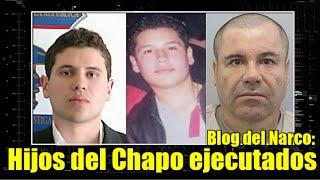 Repeat youtube video Hijos de El Chapo fueron ejecutados afirma Blog del Narco
