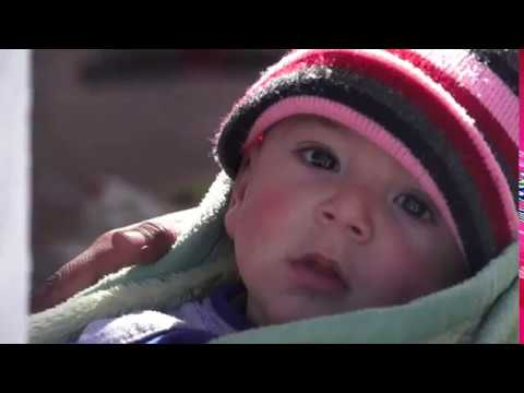 Reproductive health during emergencies: Stories from Daraa governorate in Syria