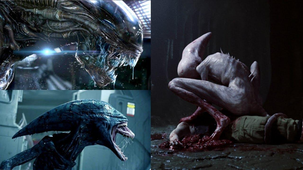 Evolution von Xenomorph, Neomorph und Deacon