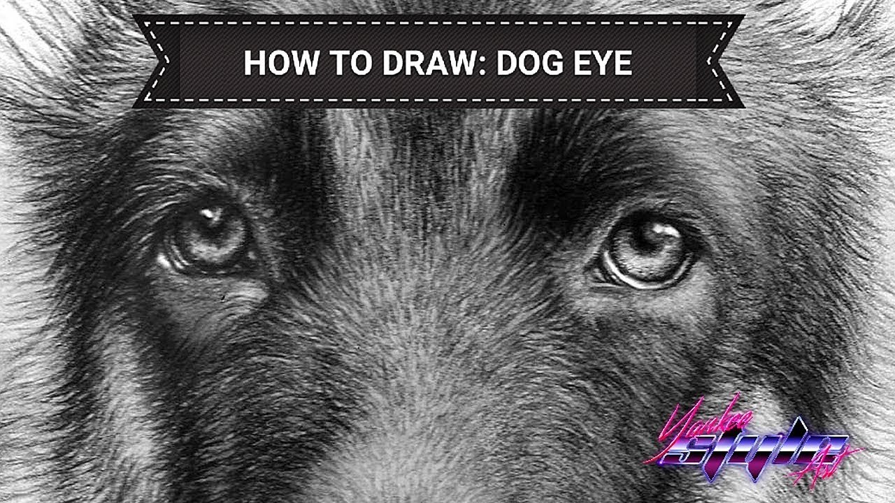 This is a graphic of Stupendous Dog Eyes Drawing