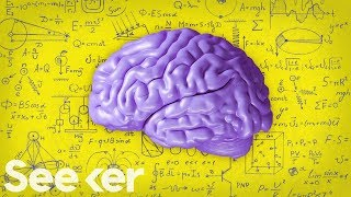 What Is the Difference Between Teen and Adult Brains?