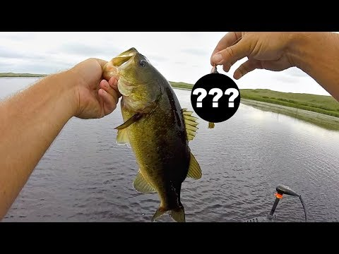 Thumbnail: This could be the BEST Grass Fishing lure EVER!!