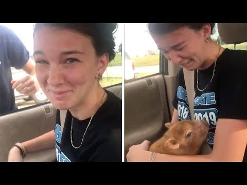 Eric Hunter - Long Time Dream Comes True For This Girl When She Got Tiny Piglet