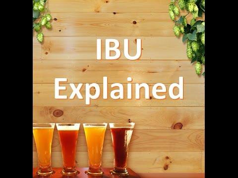 IBU Explained: Measuring Beer