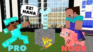 Monster School: NOOB VS PRO CHALLENGE - Minecraft Animation