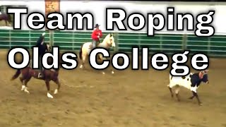 Olds College CIRA Team Roping