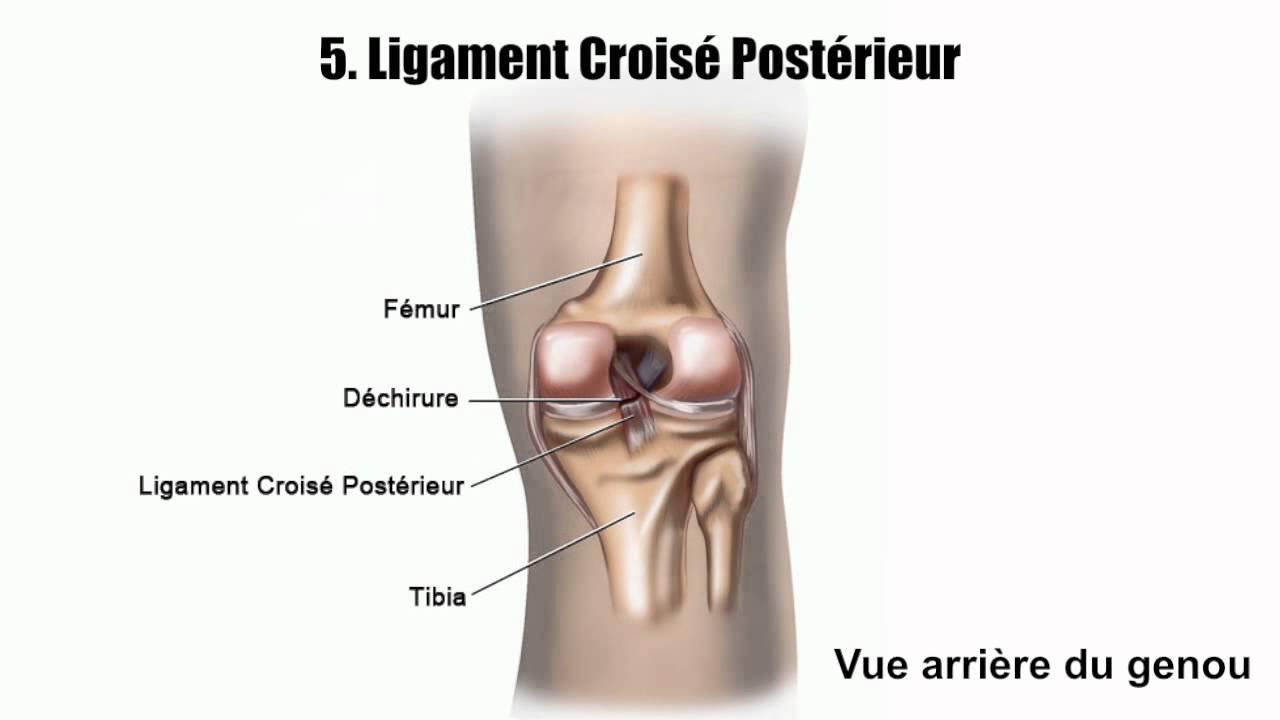 douleur jambe cote exterieur 28 images masermin
