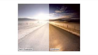 Why Buy Polarised Lenses?   Shade Station