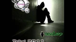 Dj Chicer - Now You´re Gone - (Original Remix) - Tribal 2011 - Los Nenes Del Underflow.wmv