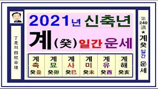 2021년 신축년 계수일간 운세 입니다.정시의 사주명리240강-2021년 계수일간의 신축년 운세 입니다.