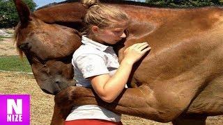 Unglaubliche Tiere Die Menschen Das Leben Gerettet Haben thumbnail