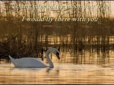 Secret Garden- Swan(lyrics)