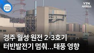 경주 월성 원전 2·3호기 터빈발전기 멈춰...태풍 영…