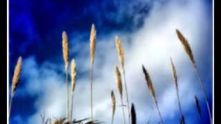 Desiderata (Poema) - Max Ehrmann / Arturo Benavides