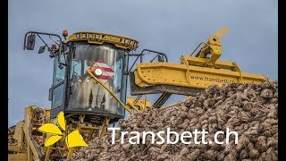 ROPA EURO MAUS 4 I Chargement de betteraves en SUISSE par l'entreprise TRANSBETT !!