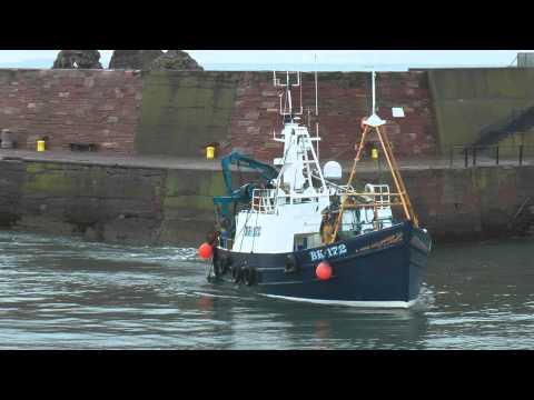 Trawlers - Dunbar Harbour