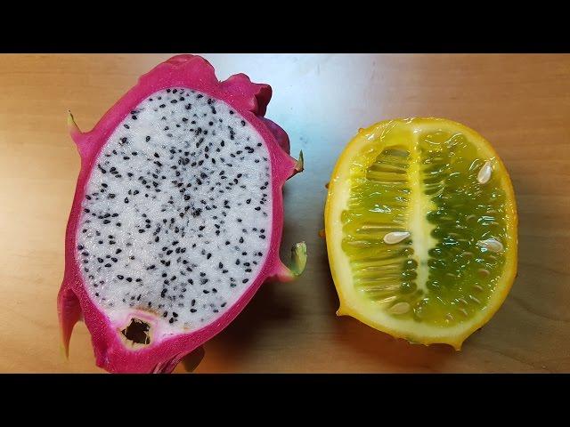 NoThx тества Екзотични плодове