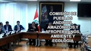 Intervención en la Com. de Pueblos Andinos