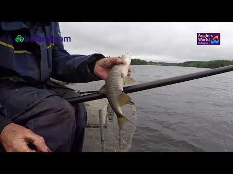Francis McGoldrick Fishing The Waggler Ireland 2019